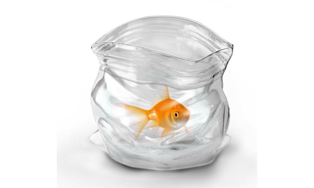 Unzipped Glass Bowl Kimjim Gift Ideas